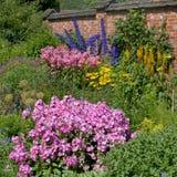 Roze Impatiens, blauwe Riddersporen, gele Achillea, in Chartwell royalty-vrije stock foto