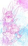 Roze Irissen stock illustratie