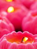 Roze kaarsen Royalty-vrije Stock Foto's