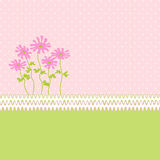 Roze Kaart Stock Afbeelding