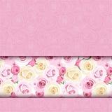 Roze kaart met rozen. Vector eps-10. Stock Afbeelding