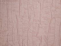 Roze kosmosbloemen onder zonlicht met kleurenfilter Zachte Achtergrond Vakantie of de dagconcept van Valentine ` s Royalty-vrije Stock Foto