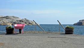 Roze kruiwagen Stock Foto