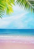 Roze kust onder palmtakken op een duidelijke dag royalty-vrije stock afbeelding
