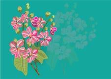 Roze lagerstroemia en varen op witte achtergrond stock illustratie