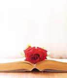Roze legt op het boek Stock Afbeeldingen