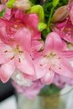 Roze lelie royalty-vrije stock afbeeldingen