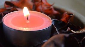 Roze lichte kaars met de vlam die in de wind golven stock videobeelden
