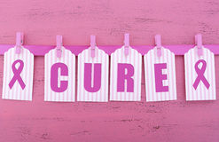 Roze Lintliefdadigheid voor van de de Gezondheidsvoorlichting van Vrouwen de Behandelingsbericht Stock Foto