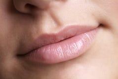 Roze lip Royalty-vrije Stock Foto