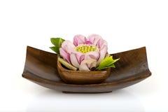 Roze Lotus Thailand stock afbeeldingen