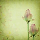 Roze lotusbloem op het oude grungedocument Royalty-vrije Stock Afbeeldingen