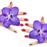 Roze manicure en orchideeën Royalty-vrije Stock Foto's
