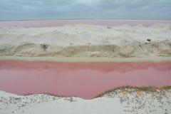 Roze Meer Las Coloradas Yucatan Mexico royalty-vrije stock foto's