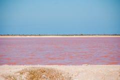 Roze Meer Slaand rode die pool in de productie van zout dichtbij Rio Lagartos, Mexico, Yucatan wordt gebruikt royalty-vrije stock fotografie
