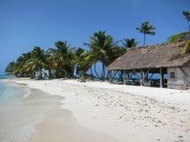 Roześmiany Ptasi Caye, Belize Obrazy Stock