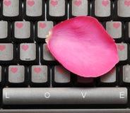 Roze nam bloemblaadje en toetsenbord toe Royalty-vrije Stock Afbeelding