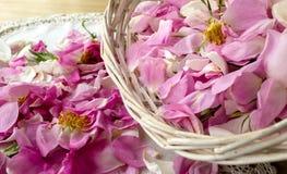 Roze nam bloemblaadjes toe Stock Foto