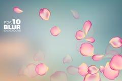 Roze nam bloemblaadjes in zachte kleur toe de vectorachtergrond van de onduidelijk beeldstijl Stock Afbeeldingen