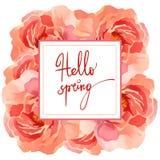Roze nam bloemenkader op witte achtergrond wordt geïsoleerd die toe Royalty-vrije Stock Foto