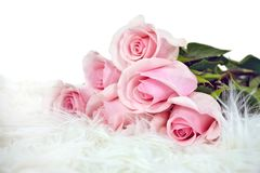 Roze nam boeket in wit bont toe royalty-vrije stock afbeelding