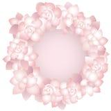 Roze nam frame toe Royalty-vrije Stock Afbeelding