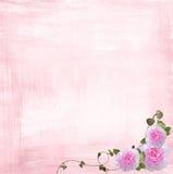 Roze nam grens toe royalty-vrije illustratie