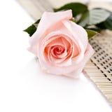 Roze nam leugens op een servet toe Stock Foto's