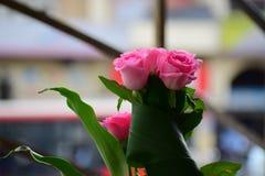 Roze nam is mooi toe Stock Afbeelding