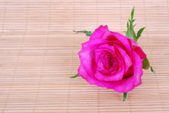Roze nam op bamboeachtergrond toe stock afbeeldingen