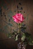 Roze nam tegen grungeachtergrond toe stock foto's