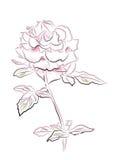 roze nam toe stock illustratie
