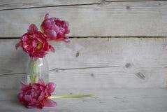 Roze Nederlandse pioentulpen in glasfles, op oude houten achtergrond royalty-vrije stock afbeelding