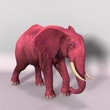 Roze olifant Stock Foto