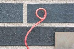 Roze op beton Stock Foto
