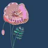 Roze Papaver. Royalty-vrije Stock Fotografie