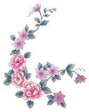Roze penoy bloem royalty-vrije illustratie