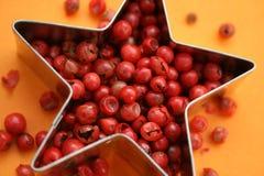 Roze Peper Royalty-vrije Stock Foto's