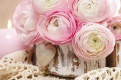 Roze Perzische boterbloemenbloemen (ranunculus) stock foto's