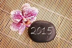 2015, roze phalaenopsisorchidee en kiezelsteen Stock Afbeelding