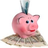 Roze piggi-bank met bankbiljetten. Geïsoleerdl stock afbeelding