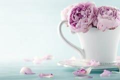 Roze pioenbloemen royalty-vrije stock afbeeldingen