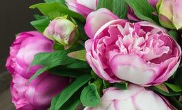 Roze pioenen royalty-vrije stock fotografie