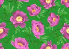 Roze Pioenen op groene achtergrond Vector naadloos bloemenpatroon vector illustratie