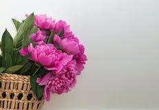 Roze pioenen in stromand dichtbij de witte muur royalty-vrije stock foto