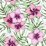 Roze plumeria en palmbladen naadloos patroon royalty-vrije illustratie