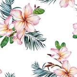 Roze plumeriabloemen en exotische palmbladen op witte achtergrond Naadloos tropisch patroon Het Schilderen van de waterverf royalty-vrije illustratie