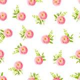 Roze ranunculus op witte naadloze vectordruk als achtergrond Royalty-vrije Stock Afbeeldingen