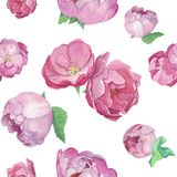 Roze rosebuds en lilac peonespatroon stock illustratie