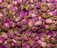 Roze rozen bloemenachtergrond Royalty-vrije Stock Afbeelding